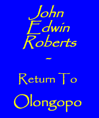 John Edwin Roberts - Return to Ologopo